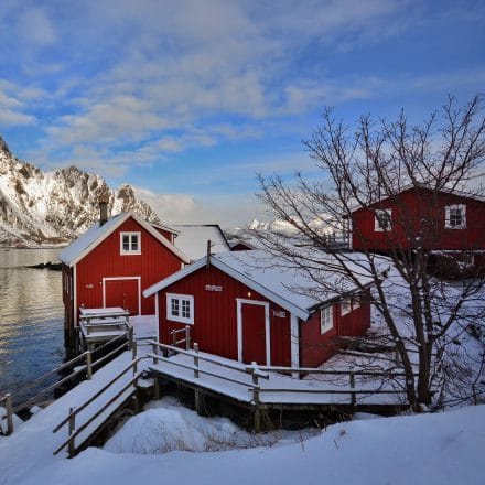 "<span style=""font-size:1.5em;"">SKI</span><br/>Ski et yoga – Lofoten – Norvège<br/>/// mars 2018 ///<br/><span style=""color: #b0cc00;"">Séjour exceptionnel!</span>"