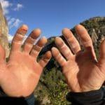 Les mains dans l'Histoire