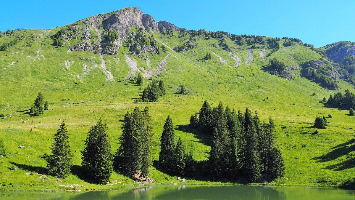 """<span style=""""font-size:1.5em;""""> NATURE </span><br/>Cascade du Dar: rando dans les Préalpes vaudoises<br/> /// Juin 2021 /// <br/><span style=""""color: #b0cc00;"""">Places disponibles</span>"""